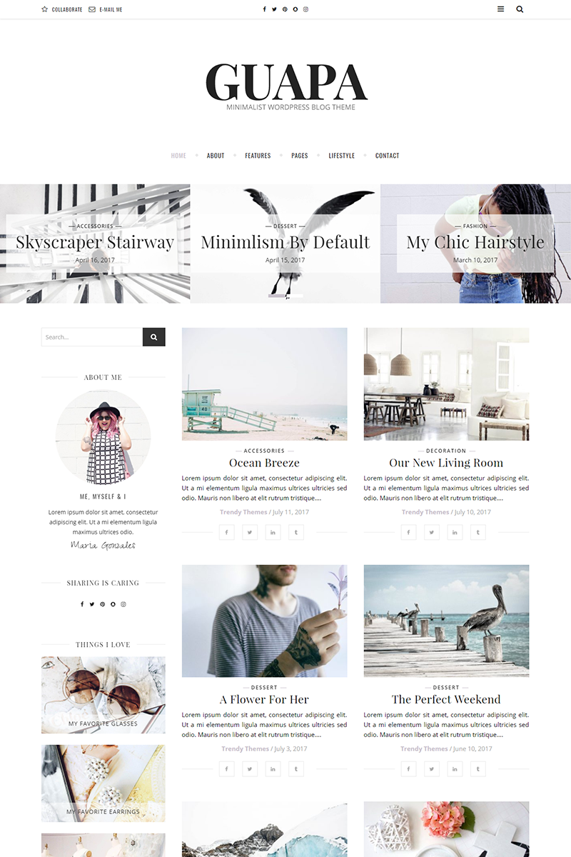 Guapa - A Minimalist WordPress Blog Theme Big Screenshot